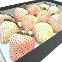 佐賀県産 白いちご 雪うさぎ 大粒12入り 2012年に品種登録された白い苺 爽やか甘さと圧倒的な香りは赤い苺に勝るとも劣らない品質 果汁が多く食味の良さが抜群...