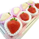 紅白いちご プチセット 赤い苺・あまおう 白い苺・雪うさぎ の詰合せ 8粒入り セット・九州 福岡県 佐賀県 ホワイト…