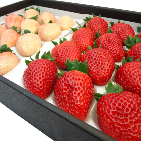紅白いちご詰合せ 奈良県産 古都華 12粒 奈良県産 淡雪 12粒入り 苺セット イチゴ詰合せ・奈良
