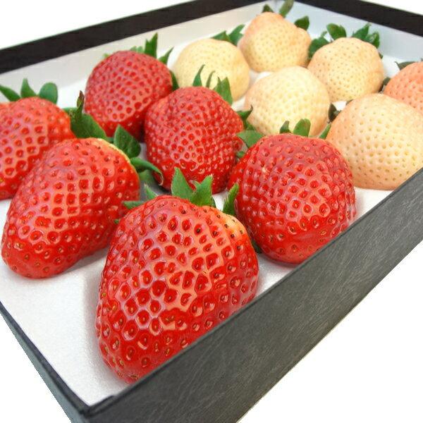 紅白いちご詰合せ 奈良県産 古都華 6粒 奈良県産 淡雪 6粒 苺セット イチゴ詰合せ・奈良 ホワイトデーにおすすめ