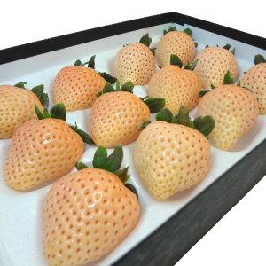 奈良県産 白いいちご 淡雪 30粒入り 2013年に品種登録された白いイチゴ 佐賀ほのか が突然変異して生まれた苺の新品種 爽やかな甘さと食味の良さは さがほのか ゆずり ホワイト