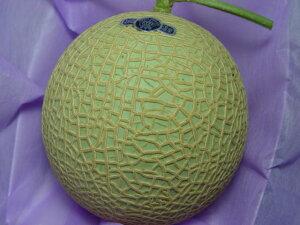 静岡県産クラウン マスクメロン (ご家庭お召し上がり用) ガラス温室で栽培されたメロンの最高級品 お歳暮ギフトのおすすめ 【#元気いただきますプロジェクト】