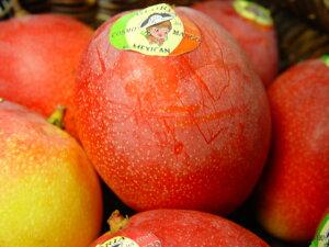 【送料無料】メキシコ産アップルマンゴー 2個入り トロピカル・フルーツの逸品! 母の日ギフトにおすすめ 出荷予定:4月上旬〜