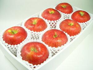 長野県産・特選シナノスイート (化粧箱8個入り) 「ふじ」と「つがる」を親に持つリンゴのエリート ハロウィン 発送予定:10月上旬〜