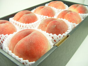 山梨県産 浅間白桃 特大玉8個(化粧箱入り) 最も暑い時期に出荷される白桃!甘くて果汁タップリのジューシーさから「桃の王様」とよばれる山梨で生まれた白桃の名品! お中元ギフトに