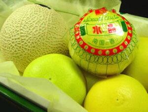 静岡県産マスクメロン と 高知県産 水晶文旦 詰合せ  土佐で栽培された文旦の最高級品種! 味の良さと品質の高さから柑橘の女王と呼ばれる逸品 お歳暮におすすめ お年賀におすすめ