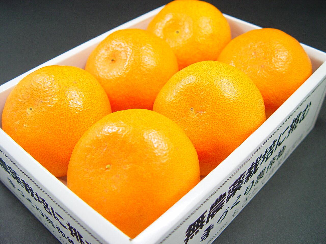 愛媛県産 せとか 6個入り TV等のマスコミで話題の柑橘の新品種!甘さ、食味の良さ、素晴らしい香りを併せ持つ国産オレンジ! ホワイトデーのギフトにおすすめ