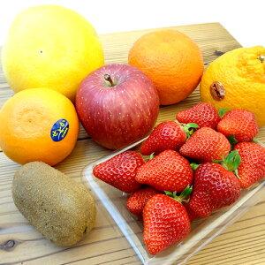 季節のフルーツ詰合せ いろいろな味が楽しめるフルーツセット 旬のフルーツをチョイスしてお届けいたします! 詰め合わせ  敬老の日のギフトのおすすめ