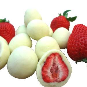 いちごトリュフ ホワイト 120g ×3箱 フリーズドライ苺をホワイトチョコレートでコーティングしたスイーツ 苺トリュフにしかない甘さと酸味のバランスが絶妙!サクサクの食感を楽しめ