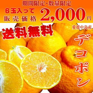 愛媛中島産 デコポン 6玉 島育ちの自然派オレンジ!マイルドに甘くてコクのある味!果汁タップリでジューシー感抜群!!  *北海道、沖縄への出荷には送料別途540円