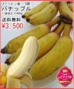 極麗バナップル(バナナ)5袋送料無料¥3,500