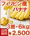 フィリピン産バナナ3房6kg(40〜50本)送料無料¥2,980