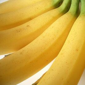 フィリピン産バナナ2kg箱(12−15本)送料無料¥2,980