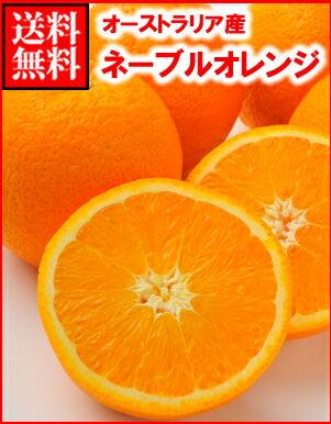 オーストラリア産ネーブルオレンジ大30玉