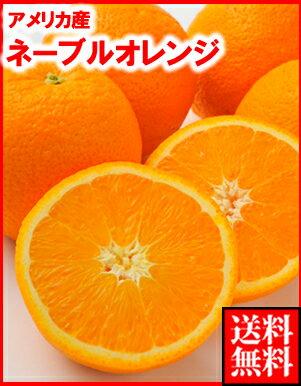 アメリカ産ネーブルオレンジ小70玉