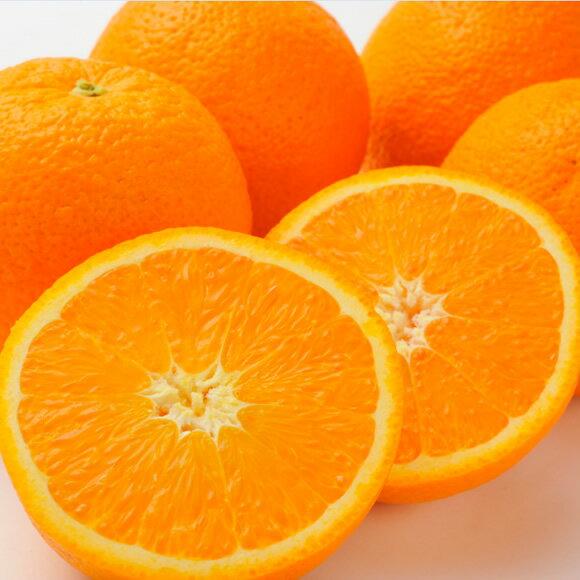 アメリカ産ネーブルオレンジ中30玉