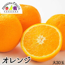 【送料無料】アメリカ産 オレンジ 大 30玉