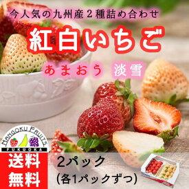 福岡・佐賀産紅白いちごあまおう&白いちご2パック