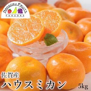 【送料無料】佐賀産 ハウスみかん 5kg箱