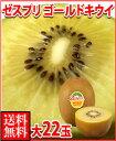 ゼスプリ・ゴールドキウイフルーツ大22玉3kg箱母の日ギフト対応可カーネーション付