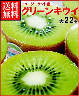 お中元ギフト対応可ゼスプリキウイフルーツ完熟グリーンキウイ大玉約3kg箱