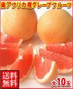 南アフリカ産グレープフルーツ赤大10玉送料無料\2,980