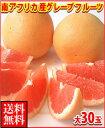 南アフリカ産グレープフルーツ赤大30玉送料無料\¥5,980