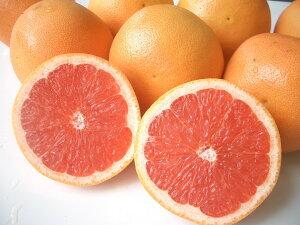 南アフリカ産グレープフルーツ赤中30玉送料無料¥¥6,480