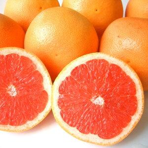 送料無料 南アフリカ産グレープフルーツ・ルビー中玉6個グレープフルーツ アフリカ ジューシー 果肉 果汁 輸入 輸入柑橘 輸入フルーツ 柑橘 南国フルーツ 暑い夏に ひんやり デザート 爽