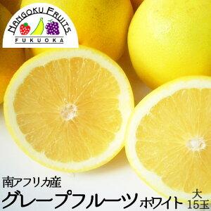 【送料無料】 南アフリカ産 グレープフルーツ・ホワイト 大玉 15〜17玉(1玉当たり約400g)