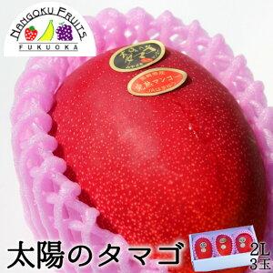 予約販売 母の日ギフト対応【送料無料】宮崎産 太陽のタマゴ2L3玉(大玉)