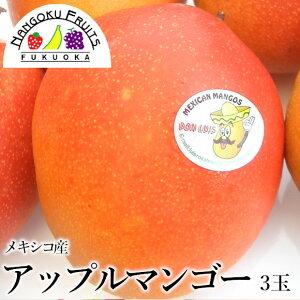 【送料無料】メキシコ産 アップルマンゴー(ドン・ルイス)3玉