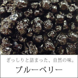 ドライフルーツブルーベリー100g送料無料メール便¥500