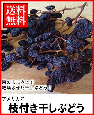 ドライフルーツ枝付き干しぶどう400g送料無料メール便¥2,160