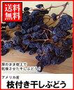 ドライフルーツ枝付き干しぶどう200g送料無料メール便¥1,150