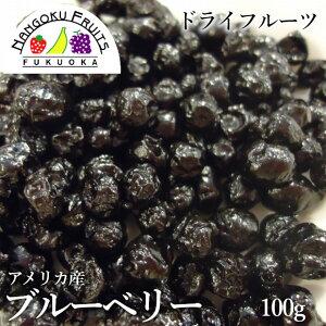 【送料無料】ドライフルーツ ブルーベリー 100g