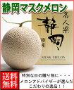 静岡マスクメロン1玉木箱送料無料¥5,940母の日ギフト対応可カーネーション付