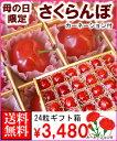 母の日限定さくらんぼギフト箱佐 藤 錦24粒(さとうにしき)カーネーション付送料無料¥3,480