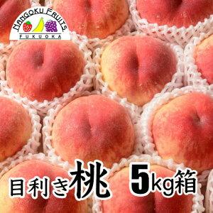 【送料無料】目利き桃 5kg箱