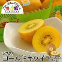 【送料無料】 ゼスプリ・サンゴールドキウイ 特大3kg(18-22玉)