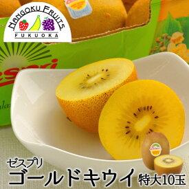 【送料無料】ゼスプリ・サンゴールドキウイ 特大10玉