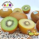 【送料無料】ゼスプリ・キウイフルーツ サンゴールド&グリーン 大玉20玉