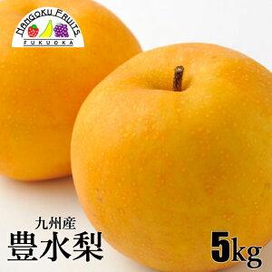 【送料無料】九州産 豊水 梨 5kg