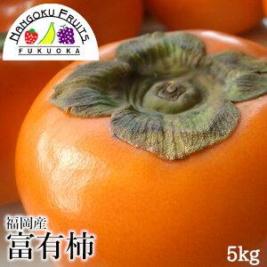 【送料無料】福岡産 富有柿 約5kg (16〜20玉)