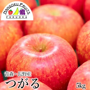 【送料無料】長野・青森産 つがる林檎 5kg (18〜20玉)