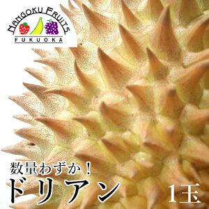 【予約販売・数量限定】タイ産 ドリアン1玉