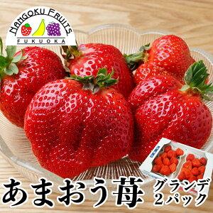 【送料無料】福岡産 あまおう苺 グランデ 2パック