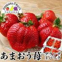 【送料無料】福岡産 あまおう苺 グランデ 4パック