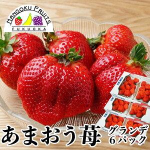 【予約販売・送料無料】福岡産 あまおう苺 グランデ 6パック
