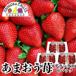 【送料無料】福岡産 あまおう苺 デラックス 6パック